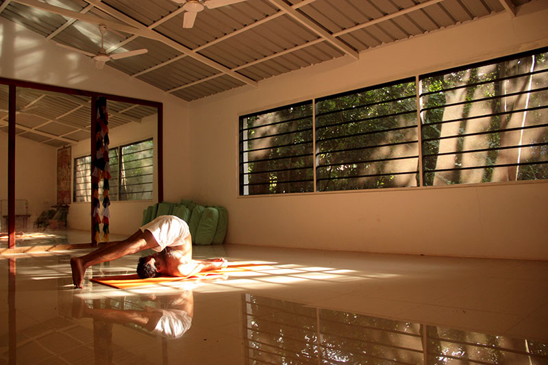 Activities In Auroville Sharnga Guest House