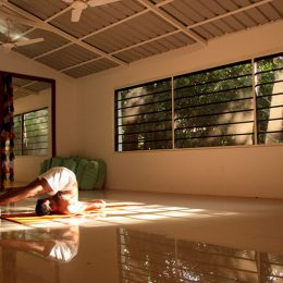 Yoga-hall Sharnga guest house